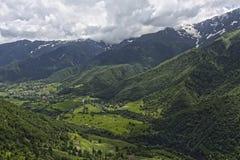 Gröna berg av Georgia Royaltyfri Fotografi