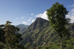 Gröna berg med kolonier Ella, Sri Lanka Royaltyfri Bild