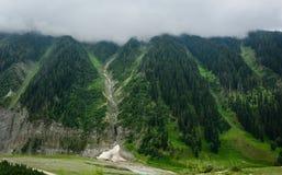 Gröna berg med sörjer trädskogen i Srinagar, Indien Arkivfoton