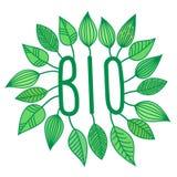 Gröna bio undertecknar in med den växande sidor, vektoretiketten och etiketten, den ekologiska begreppsklistermärken, bokstäver Royaltyfri Illustrationer