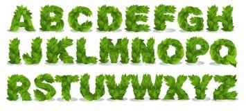 Gröna bladstilsorter