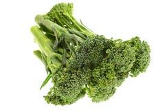 Gröna broccoliforar Fotografering för Bildbyråer