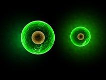 Gröna celler - illustration 3D royaltyfri illustrationer