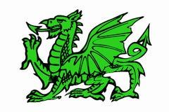 Gröna Daragon av isolerade Wales - Arkivbild