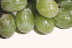Gröna druvor Royaltyfria Bilder