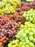 Gröna druvor och röda druvor fotografering för bildbyråer
