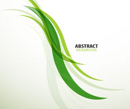 Gröna ecolinjer abstrakt bakgrund Arkivfoto