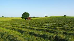 Gröna fält med gräs och hö klippte klart att skördas Kullar i sydlig Tyskland inte långt från fjällängarna stock video