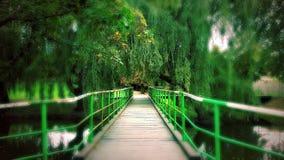 Gröna färger Arkivbild