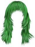 Gröna färger för moderiktiga hår för kvinna långa Skönhetmode Realis Royaltyfria Foton
