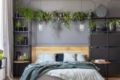 Gröna filt- och grå färgkuddar på träsäng i blom- sovrum I fotografering för bildbyråer