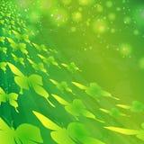 Gröna fjärilar Arkivfoto