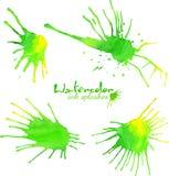 Gröna fläckar för vattenfärgfärgstänkvektor Royaltyfri Bild