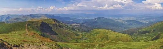 Gröna granträd av byn mot bakgrunden av de Carpathian bergen royaltyfri foto