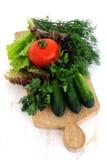 Gröna gurkor, tomat och nya örter Fotografering för Bildbyråer