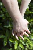 gröna händer för par som rymmer förälskelse Arkivbild