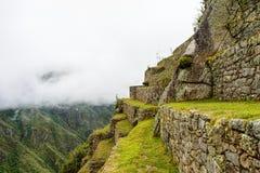 Gröna jordbruks- terrasser av forntida Inca Citadel under skurkroll arkivbild