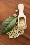 Gröna kaffebönor med bladet Arkivfoton