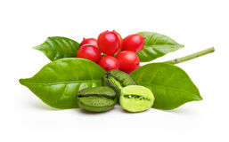 Gröna kaffebönor med bladet Royaltyfri Fotografi