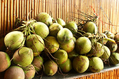 Gröna kokosnötter Arkivbild