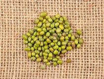 Gröna korn mung royaltyfria bilder