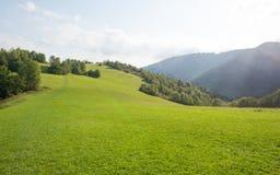 Gröna kullar är en fest för ögat Arkivbilder