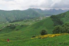 gröna kullar Fotografering för Bildbyråer