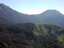 Gröna kullar av Kerala royaltyfria foton