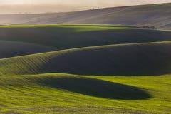 Gröna kullar av Moravia royaltyfri foto