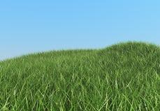gröna kullar för gräs Royaltyfri Bild