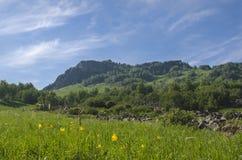 Gröna kullar i bergdalen och molnig himmel Arkivfoto