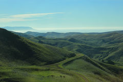 Gröna kullar och havlandskap Royaltyfri Bild