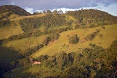 Gröna kullar på skymning arkivbilder