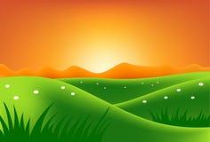 Gröna kullar på solnedgången Arkivbilder