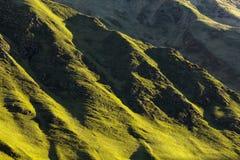 Gröna kullar under morgonsolen Arkivbild