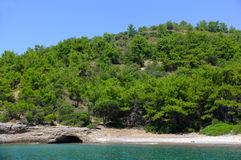 Gröna kullar vid havet Arkivfoton