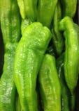 Gröna långa paprikor Arkivfoto