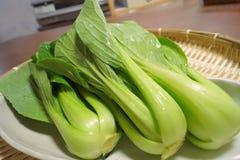 Gröna lövrika grönsaker från Japan Royaltyfri Fotografi