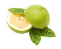 gröna leafs för grapefrukter arkivbilder