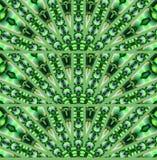 Gröna lilor för sömlösa halvcirkelformiga prydnader Royaltyfri Bild