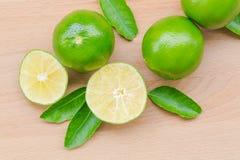 gröna limefrukter Fotografering för Bildbyråer