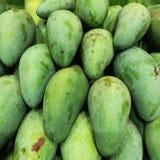 gröna mango Royaltyfria Bilder