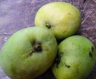 gröna mango Arkivfoto