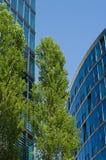 gröna moderna trees för byggnader Arkivfoto