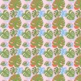 Gröna monsterasidor Arkivbild