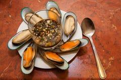 gröna musslor New Zealand royaltyfri fotografi