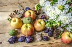 Gröna muttrar, katrinplommoner, äpplen och fikonträd med en bukett av vita dahlior Royaltyfria Foton