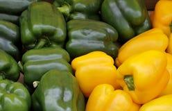 Gröna och gula spansk peppar Fotografering för Bildbyråer