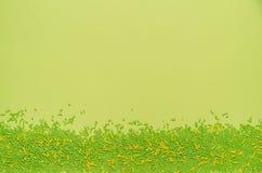 Gröna och gula stänk på gräsplan arkivfoton