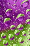 Gröna och purpurfärgade små droppar Royaltyfria Foton
